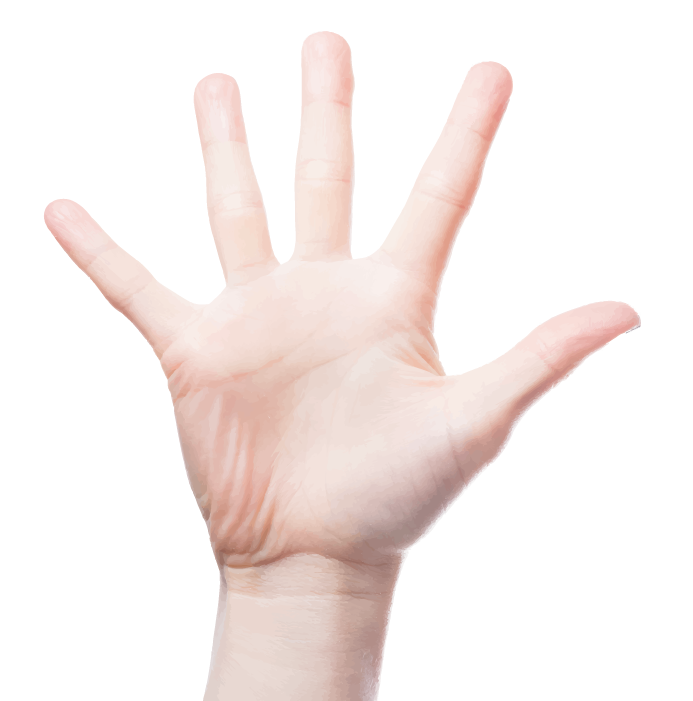 TDG Hand.png